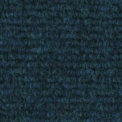 Exocord Saphire
